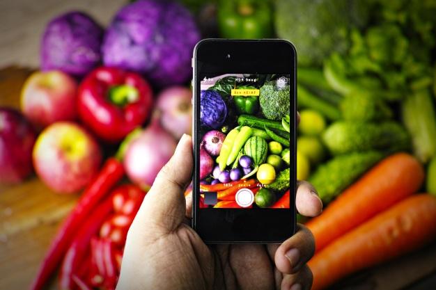 SMS para Nutricionistas